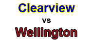 clearview-v-wellington